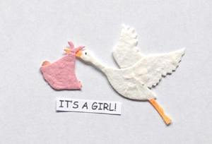 its a girl stork